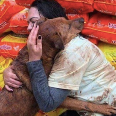 Foto: Perrito abraza a mujer que donó comida para su refugio