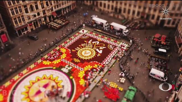 artista aleman crea timelapse de enorme alfombra de flores en bruselas