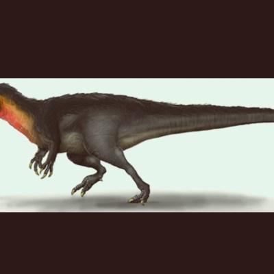 Encuentran los primeros registros de carcarodontosaurios en Lisboa