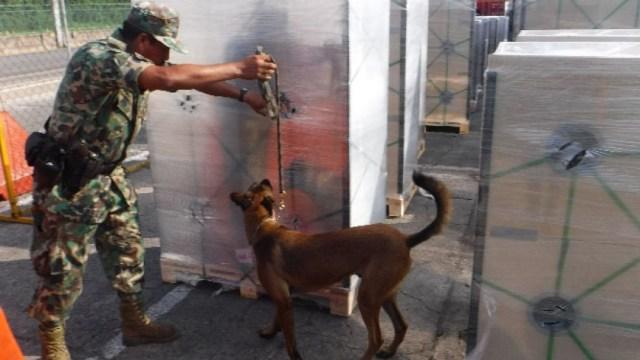 Un elemento de la Armada de México y su perro revisan la mercancía que llegó a la Aduana Marítima del Puerto de Manzanillo.