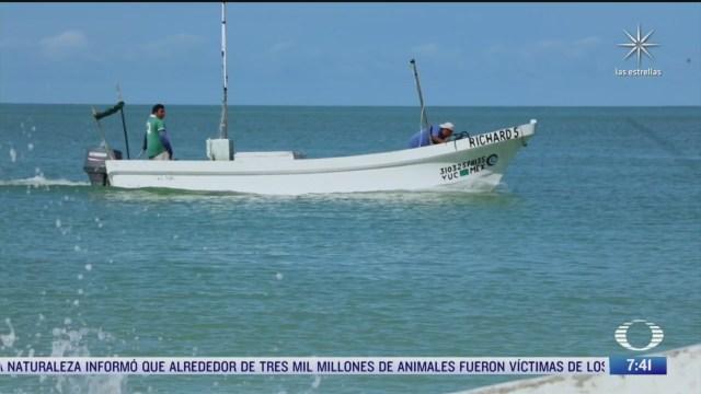 sobreexplotacion y cambio climatico afectan a pescadores en yucatan