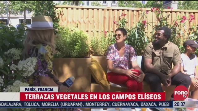 instalan terrazas vegetales en los Campos Elíseos de PArís, en Francia