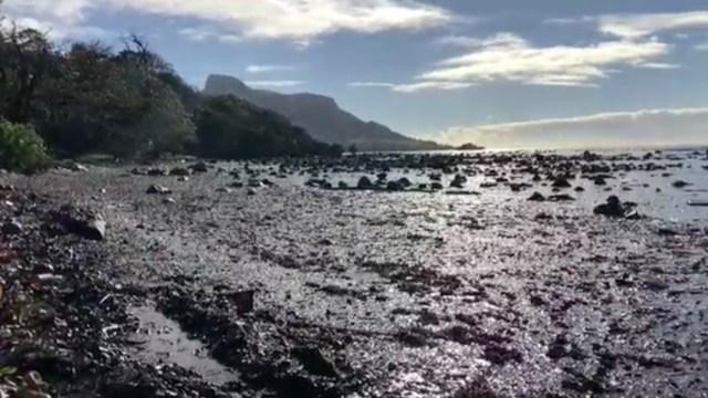 Trabajan a contrarreloj para evitar mayor derrame de petróleo en paradisíacas costas africanas de Mauricio
