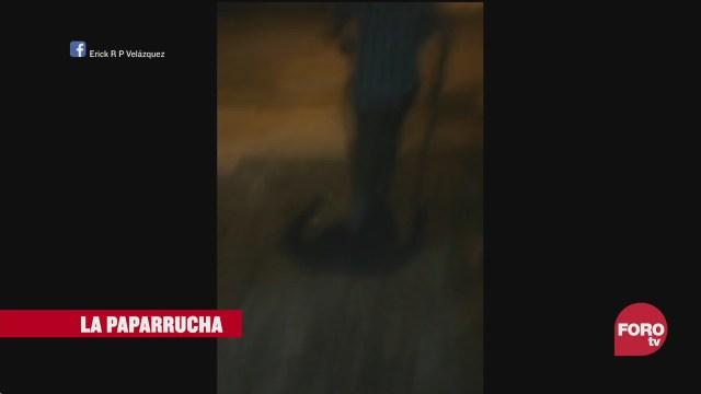 El nahual de Veracruz, la paparrucha del día