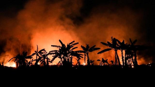 Incendio forestal en Brasil