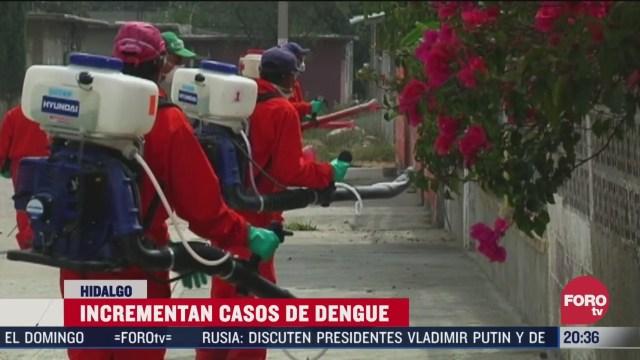 campaña matar mosquito transmisor del dengue en hidalgo
