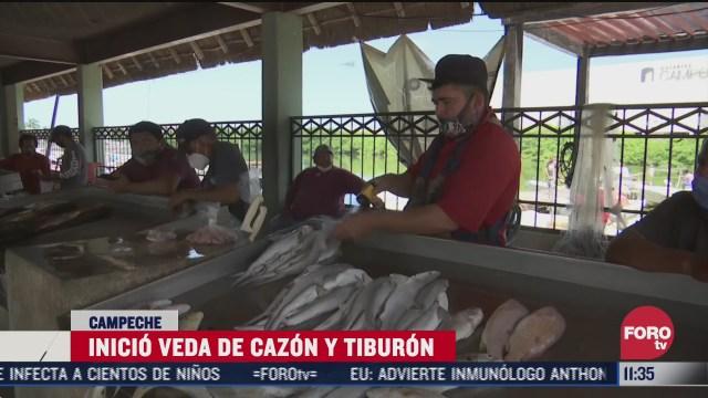 FOTO: 1 de agosto 2020, inicio la veda de cazon para proteccion de la especie en campeche