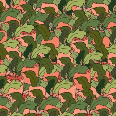Reto visual: Encuentra los tréboles entre las demás plantas