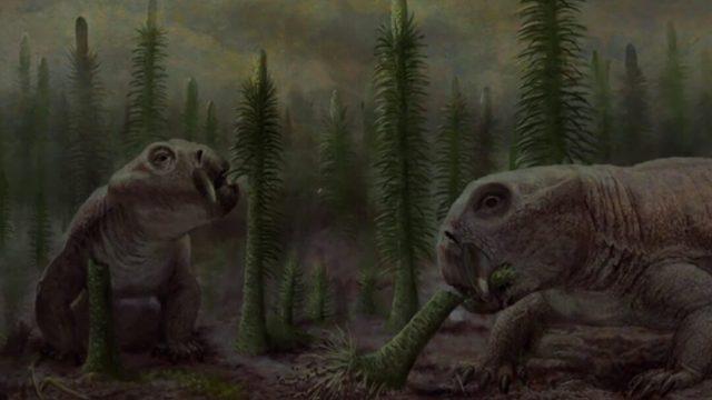 Descubren extinción masiva de hace 200 millones de años Episodio Pluvial Carniense