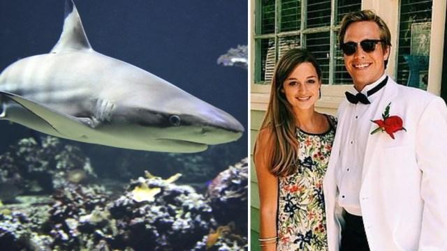 Mujer embarazada salva a su esposo del ataque de un tiburón