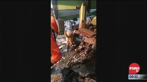 hay 12 muertos por colapso de edificio en india