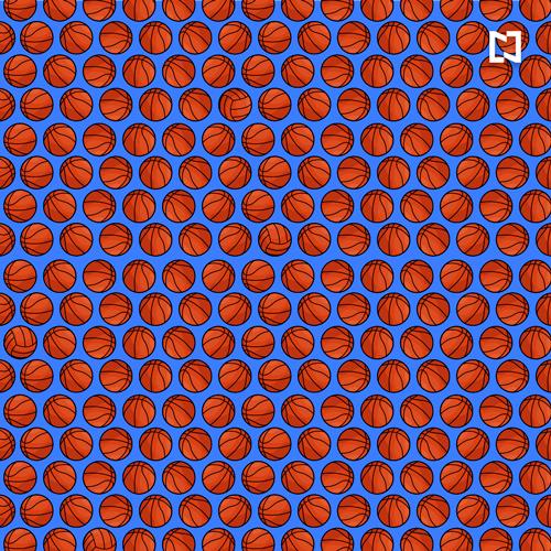 Encuentra los balones de voleibol entre los de basquetbol en este reto visual