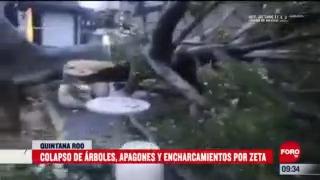colapsan arboles y hay vialidades encharcadas en playa del carmen por huracan zeta