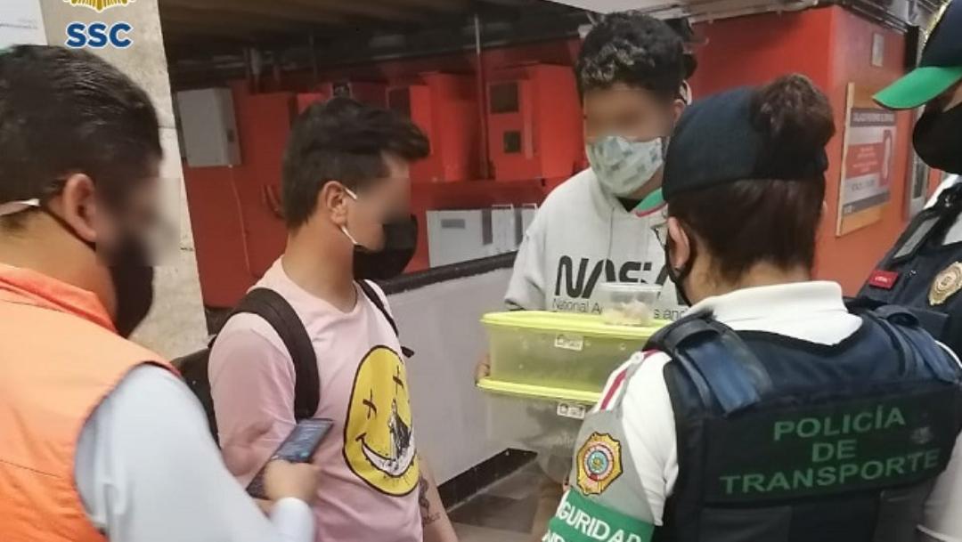 Detienen a jóvenes que transportaban cocodrilos en el metro