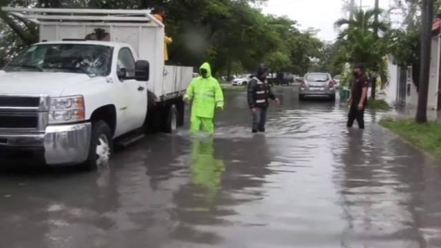 """Árboles caídos e inundaciones fueron el saldo de la tormenta tropical """"Gamma"""" a su paso por Quintana Roo"""