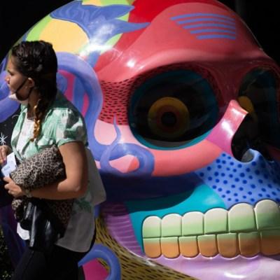 Por aglomeraciones, retirarán expo de Mexicráneos en Reforma
