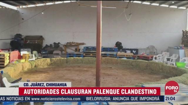 clausuran palenque clandestino en ciudad juarez