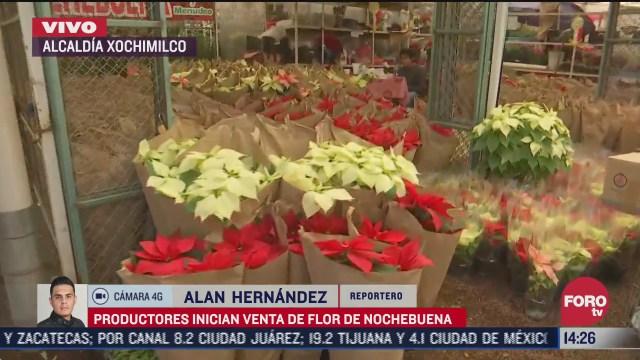 inician venta de nochebuenas en xochimilco