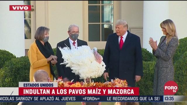 trump indulta a los pavos maiz y mazorca por ultima vez en su mandato