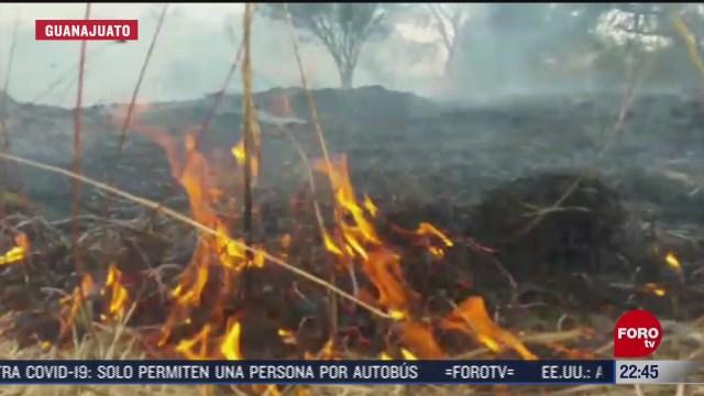 guanajuato registra primeros incendios de pastizales
