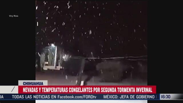 se registra nevada en cuatro municipios de chihuahua