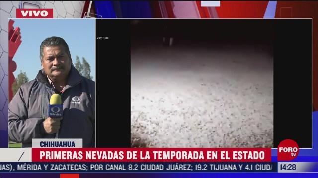 se registran primeras nevadas de la temporada en chihuahua