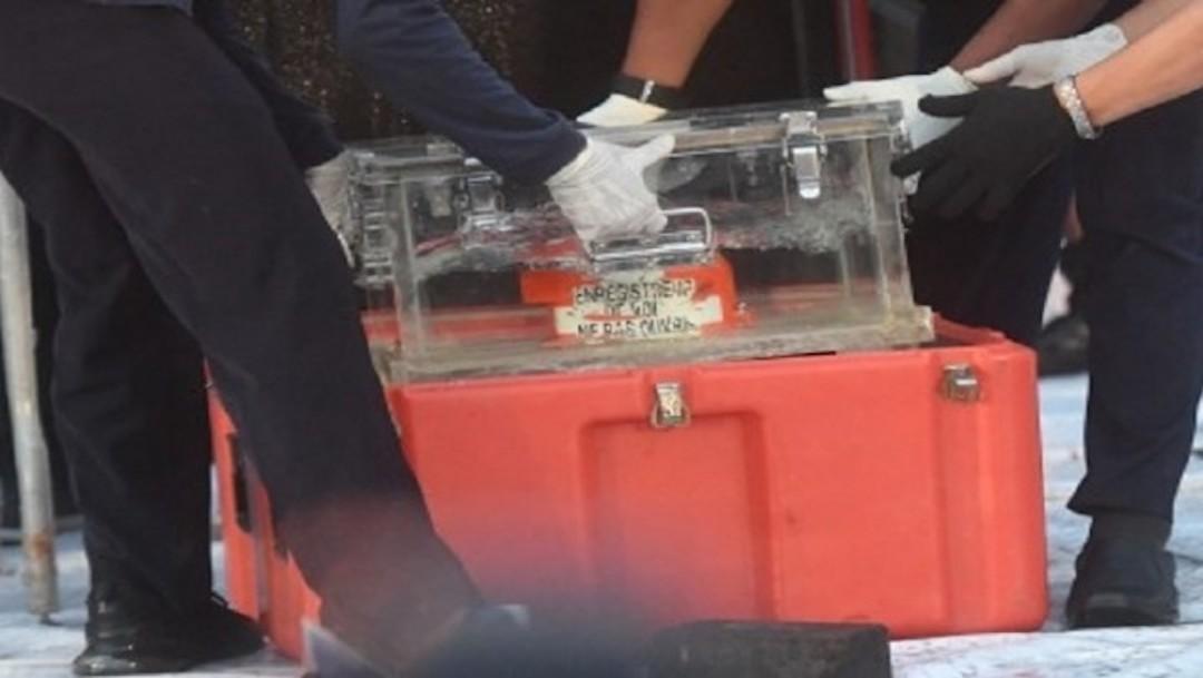Encuentran caja negra del avión que cayó al mar con 62 personas en Indonesia
