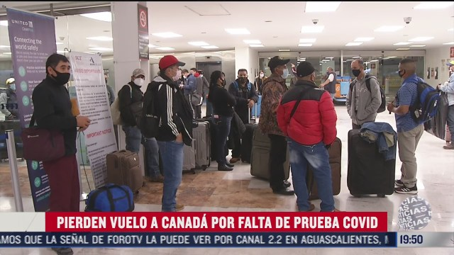 mexicanos pierden vuelo a canada por falta de prueba de covid