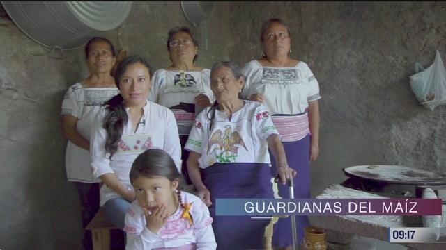 retratos de mexico guardianas del maiz