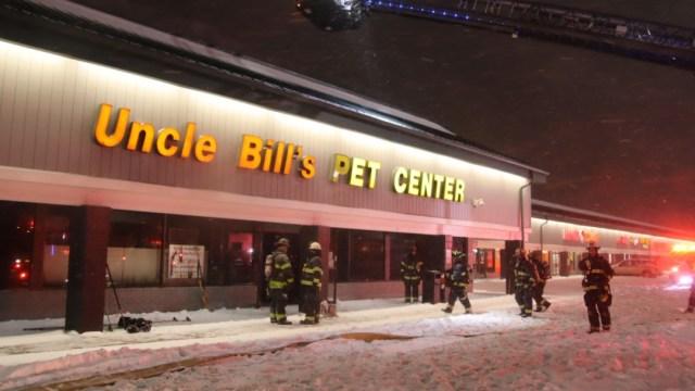 Bomberos de Indianápolis acuden a una tienda de mascotas tras un incendio (Twitter: @IFD_NEWS)