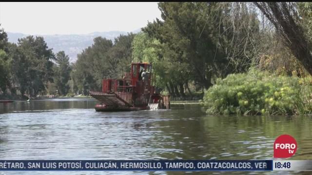 recuperacion de canales lacustres y humedales en xochimilco beneficia a productores