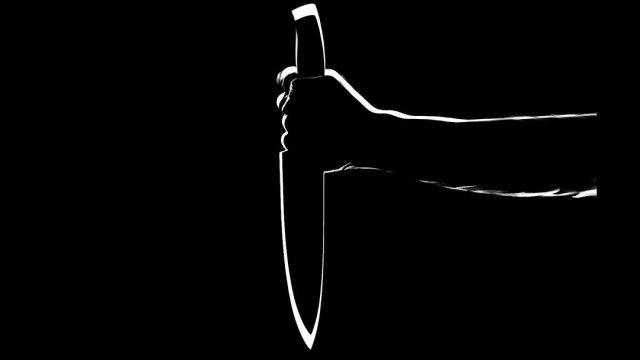 En Michigan, Estados Unidos, una niña de 14 años mató a su abuelita a puñaladas