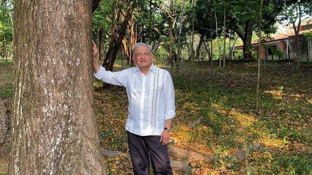 Fotografía del presidente Andrés Manuel López Obrador