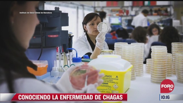 conociendo la enfermedad de chagas