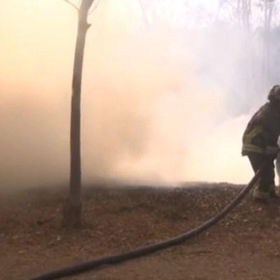 Controlan en un 70% incendio forestal en el Bosque de Chapultepec
