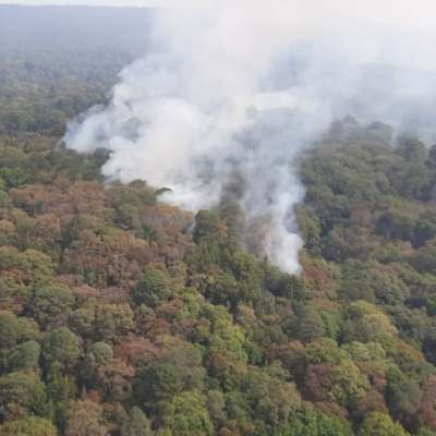 Controlan en 90% incendio forestal en el Tepozteco, Morelos