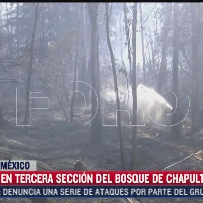 controlan en un 70 incendio forestal en el bosque de chapultepec