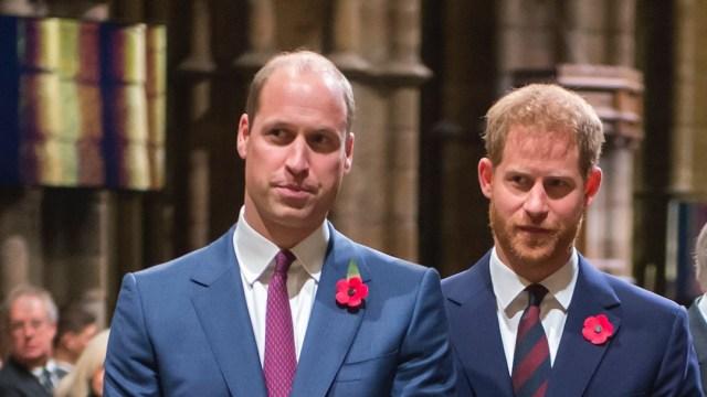 Príncipes Enrique y Guillermo (Getty Images, archivo)