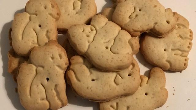 galletas, animales, veganos, comida, medio ambiente