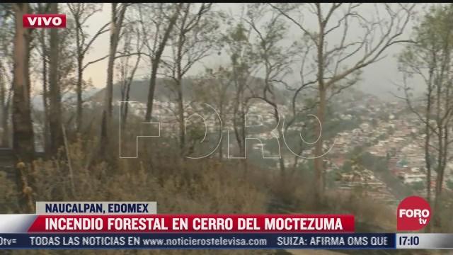 incendio forestal en naucalpan arrasa con 10 hectareas de pastizales