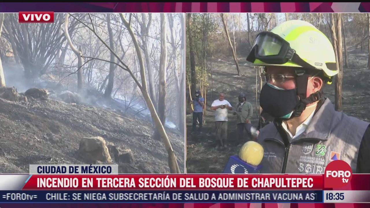 pronta accion permitio sofocar incendio en bosque de chapultepec sgirp cdmx