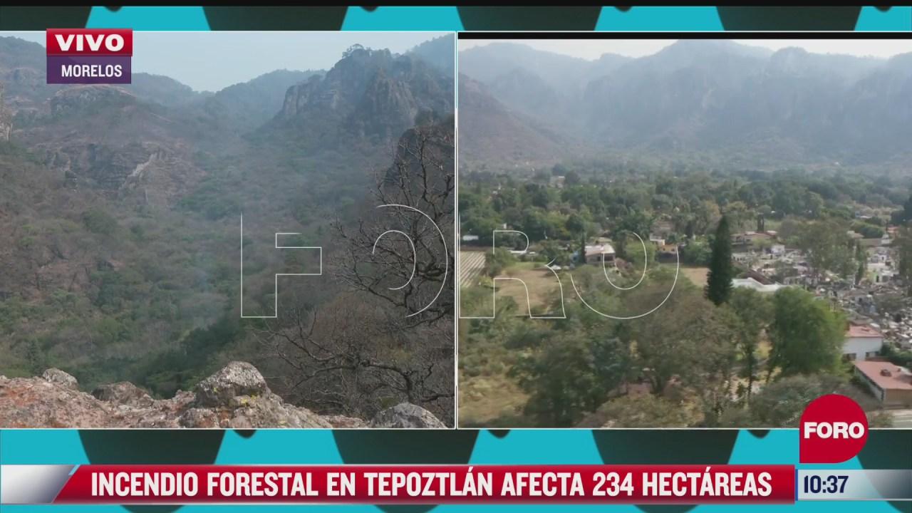 reportan avance del 50 para controlar incendio forestal en tepoztlan