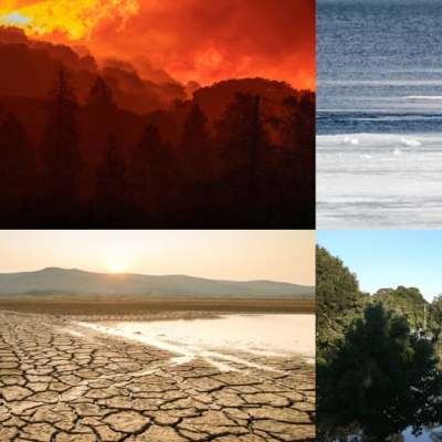 'Restaurar nuestra Tierra', llamado urgente para contrarrestar los efectos del cambio climático