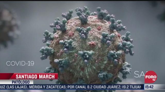 vacuna covid de covaxin busca potencializar sistema inmune