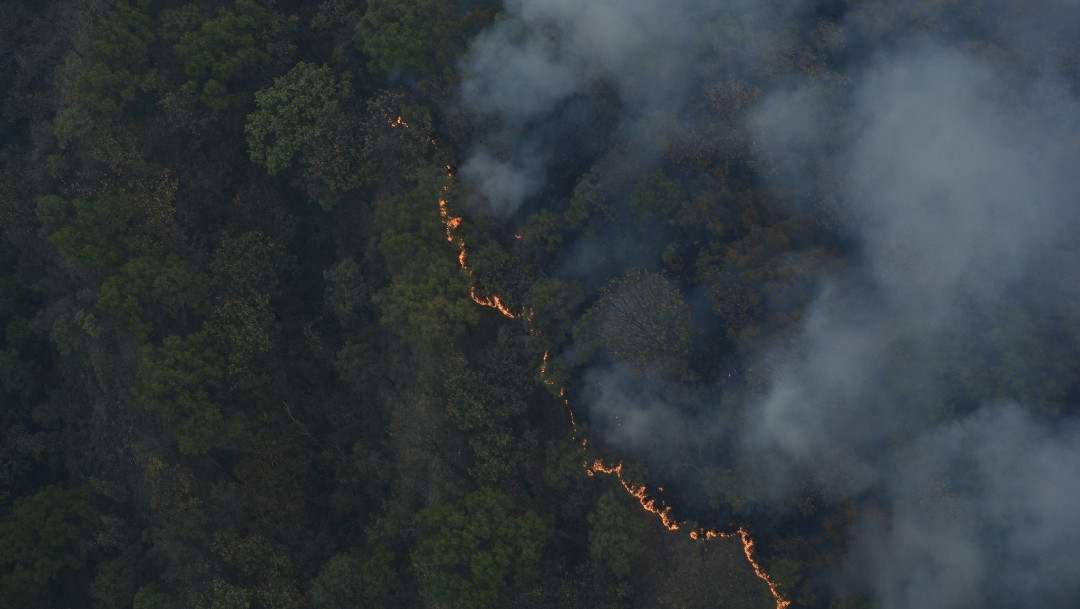 Vientos impiden sofocar el incendio en el Bosque de la Primavera