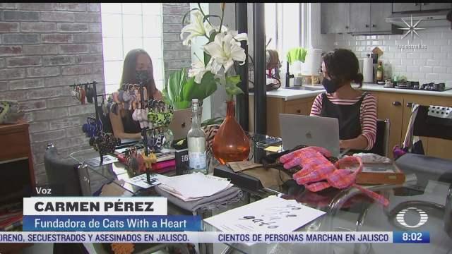 cats with a heart fundacion que ayuda a mujeres que estuvieron en reclusion
