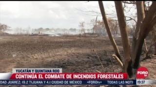 Continúa combate a incendios forestales en Yucatán y Quintana Roo