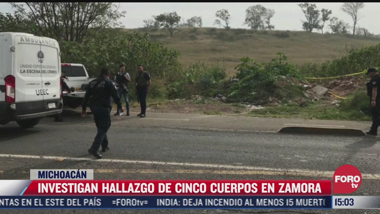 hallan 5 cuerpos en el municipio de zamora michoacan