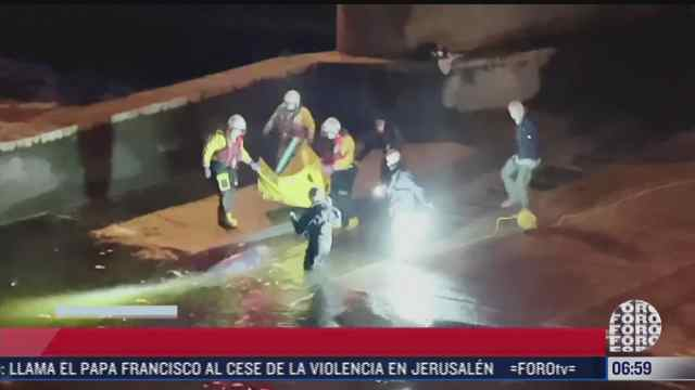 rescatan a ballena que quedo varada en un rio
