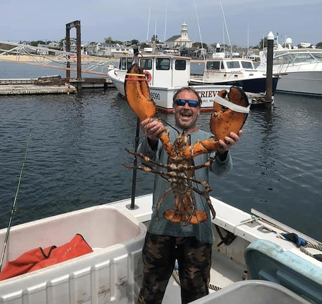 pria menangkap ikan paus lobster lobster